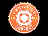 Csgo-stickers-team roles capsule-support