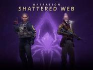 Shatteredweb blog image