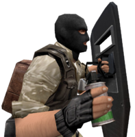 P smokegrenade shield cz