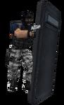 P shield deagle