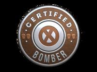 Csgo-stickers-team roles capsule-bomber foil