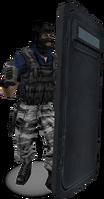 P flashbang shield