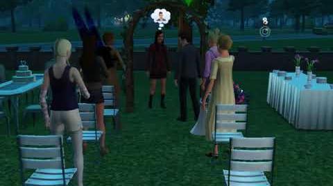 Tristan and Claire Van Gould's Wedding