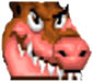 CTR Dingodile Icon