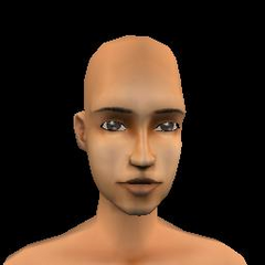 Adult Female - 25 Archcsla <small>(Broken-face)</small>
