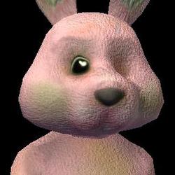 Social Bunny (1) BV