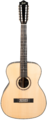 12-String Acoustic Guitar.png