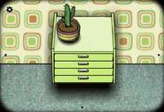 Cactus summer