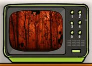 ForestTV
