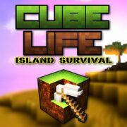 Cube Life