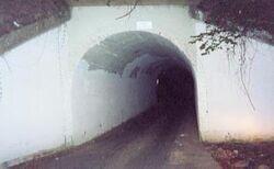 Bunnyman bridge night