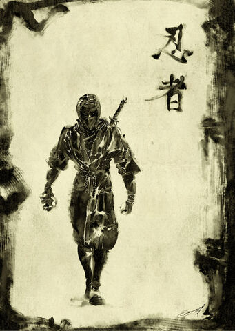 File:Black Shinobi.jpg