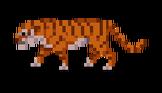 Enemy-Tiger