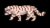 White_Tiger#Companion