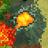 Hex active volcano