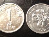 Maldivian 1 laari coin