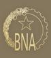 National Bank of Angola logo