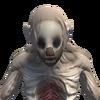 Mug-ScorpionNewborn