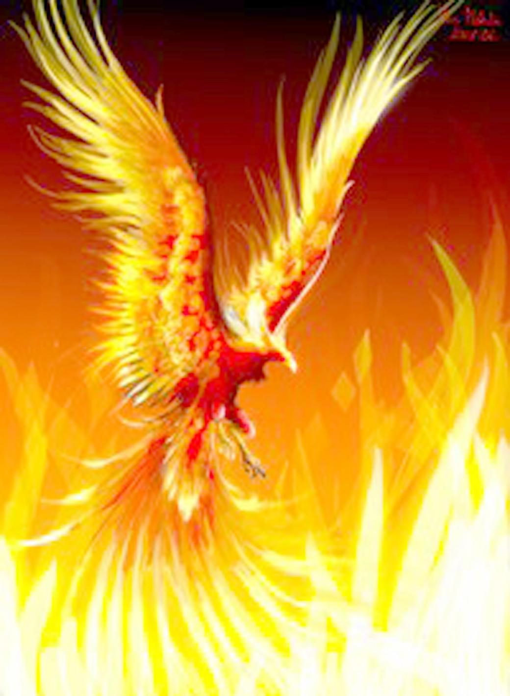 ring of fire fanon universe custom pacific rim wiki