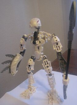 Sonex, rahkshi head, toa body