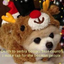 Death to bosnia
