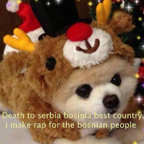 File:Death to bosnia.jpg