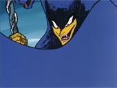 Pantherzora