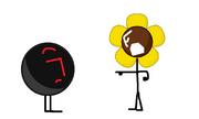 Black ball and sunflower