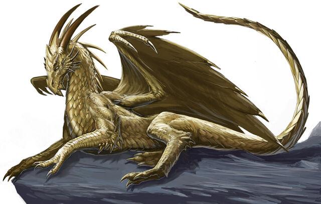 File:Dragon5.jpg