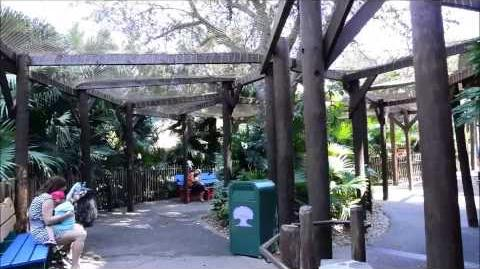 Discovery Island Trails, Disney's Animal Kingdom, Walt Disney World Resort