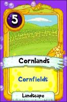 Landscapes-Cornfields