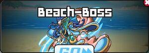 Beach-Boss