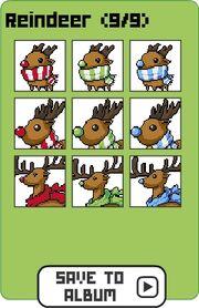 Family reindeer