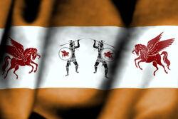 Troy flag