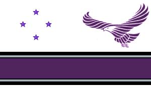Newsocflag