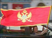 41674278 flag ap416