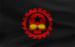 H War Flag