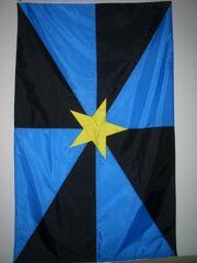 RealNPOflag