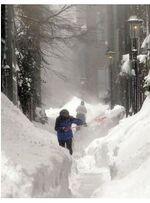 Boston Blizzard