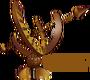 BronzeRC