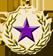 Recruiter medal 2