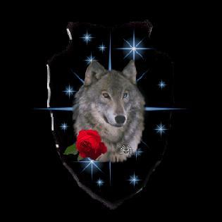 Silver-rose-wolf-arrowhead