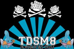 Tdsm8flagbd0