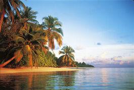 Tropicalbeach