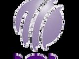 Invicta Cricket League