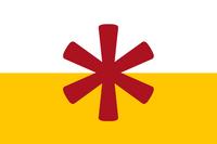 SanSerFlag