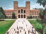 Farrin University of the Republic of Socotra