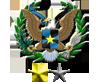 Diplo Award 1.5y Service