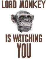 LMiswatching