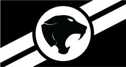 LOSS New Flag